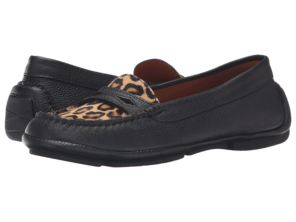Aquatalia Sawyer (Black/Leopard Calf/Haircalf) Women