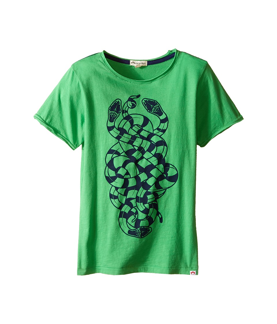 Appaman Kids - Super Soft Snakes Graphic Tee (Toddler/Little Kids/Big Kids) (Classic Green) Boy's T Shirt