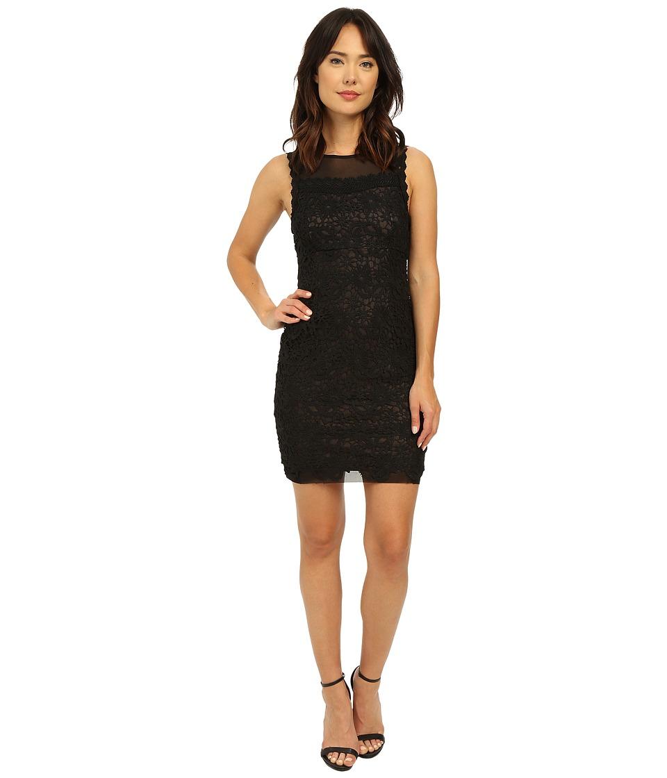Brigitte Bailey - Ella Sleeveless Lace Dress (Black/Nude) Women's Dress