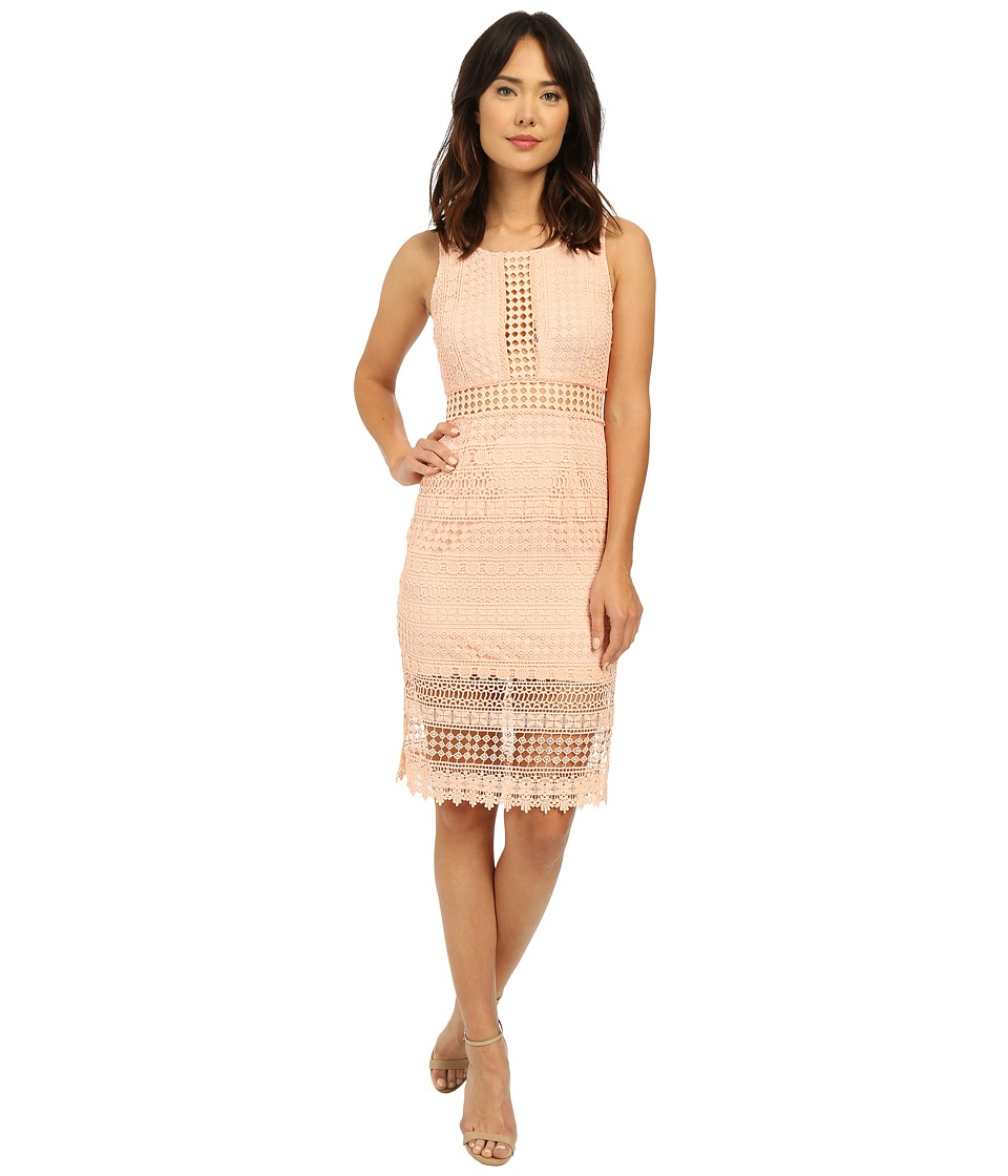 Brigitte Bailey - Ayla Lace Midi Dress (Blush) Women's Dress