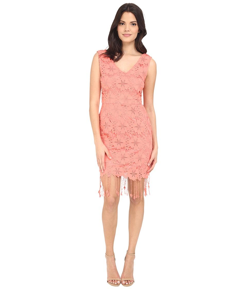 Brigitte Bailey - Harper Lace Fringe Dress (Coral Pink) Women's Dress