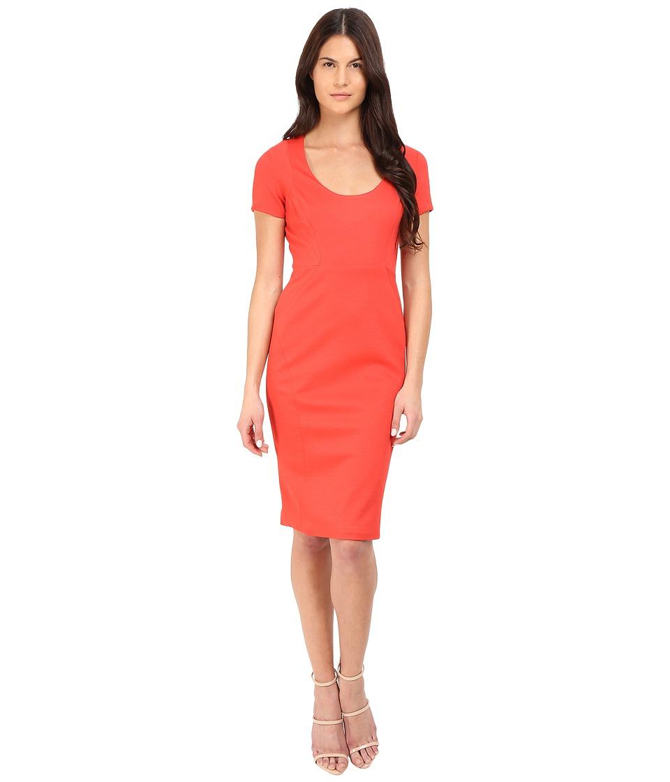 Zac Posen Short Sleeve Fitted Sheath Dress (Coral) Women