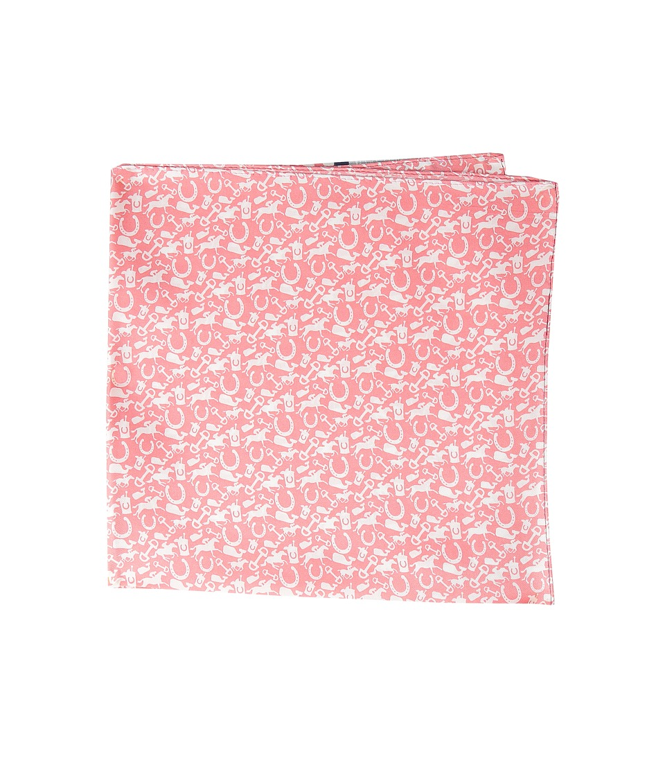 Vineyard Vines - Pocket Square-All Over Derby (Peach) Ties