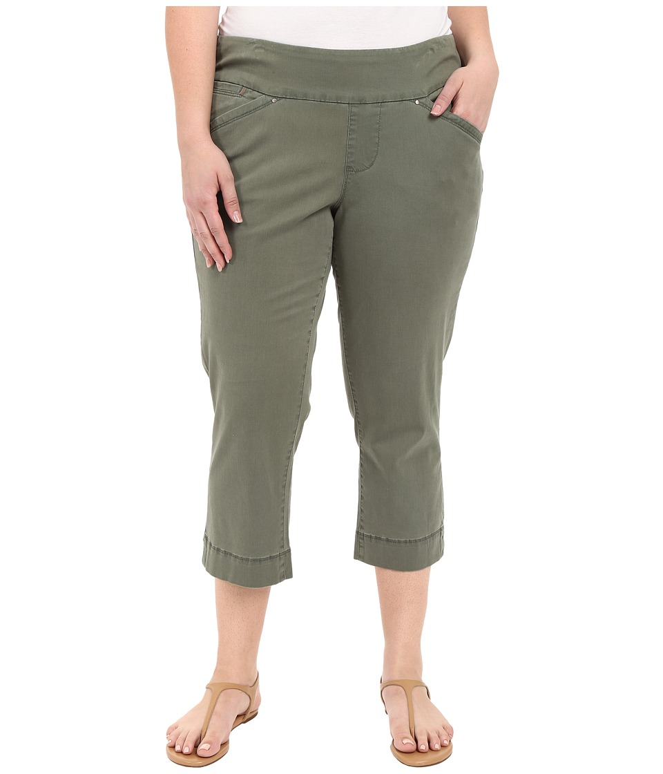 Jag Jeans Plus Size - Plus Size Marion Crop in Bay Twill (Jungle Palm) Women's Casual Pants