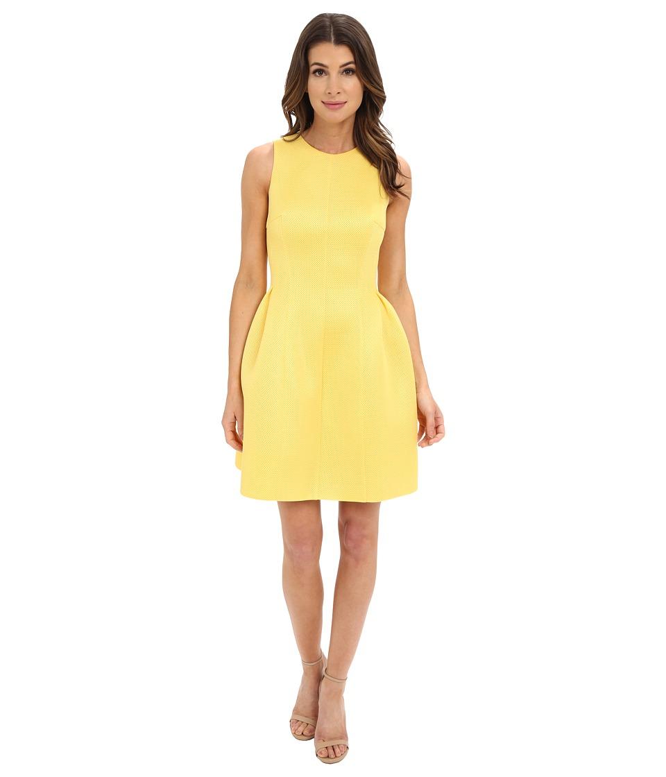 Calvin Klein Fit and Flair Dress CD6M3110 (Daisy) Women