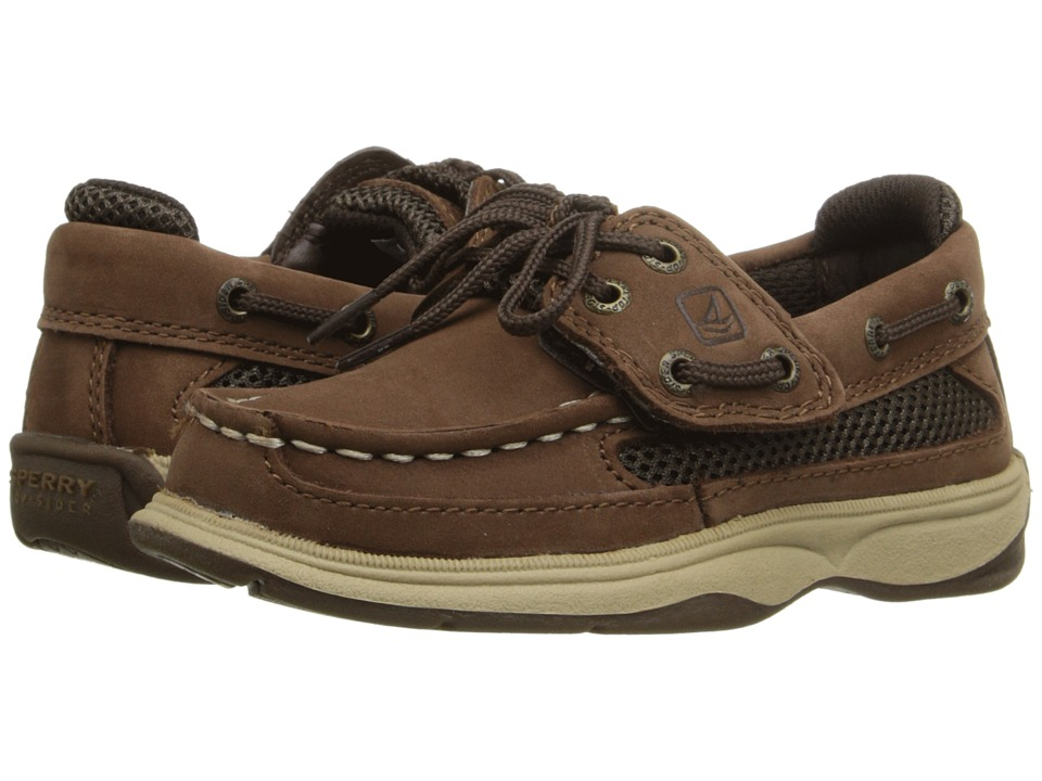 Sperry Kids - Lanyard A/C (Toddler/Little Kid) (Cigar Brown) Boy's Shoes