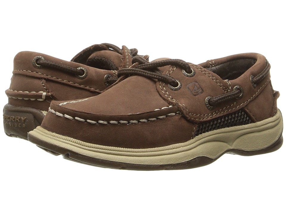 Sperry Kids - Intrepid (Toddler/Little Kid) (Cigar Brown) Boy's Shoes