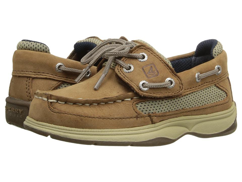 Sperry Kids - Lanyard A/C (Toddler/Little Kid) (Dark Tan/Navy) Boy's Shoes