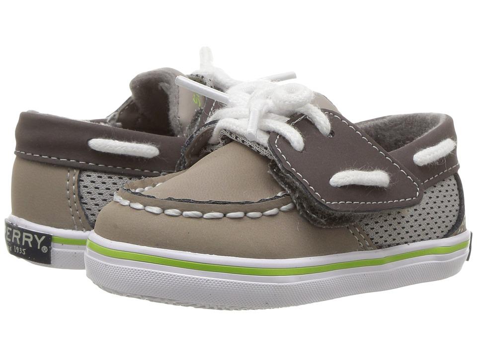 Sperry Kids - Intrepid Crib Jr. (Infant/Toddler) (Grey) Boy's Shoes