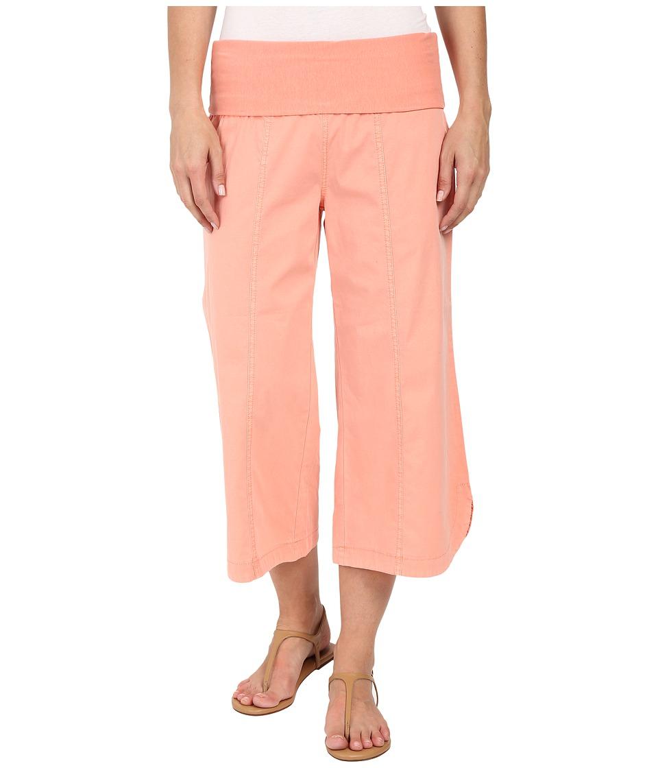 XCVI - Harrison Culottes (Fiesta) Women's Casual Pants