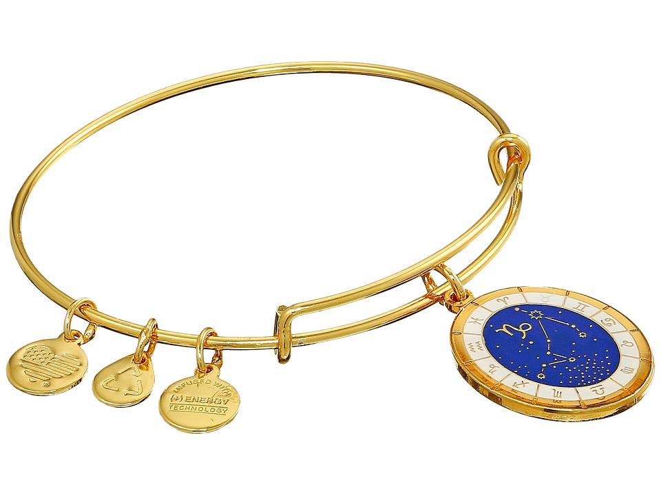 Alex and Ani - Celestial Wheel Capricorn Constellation Bangle (Yellow Gold) Bracelet