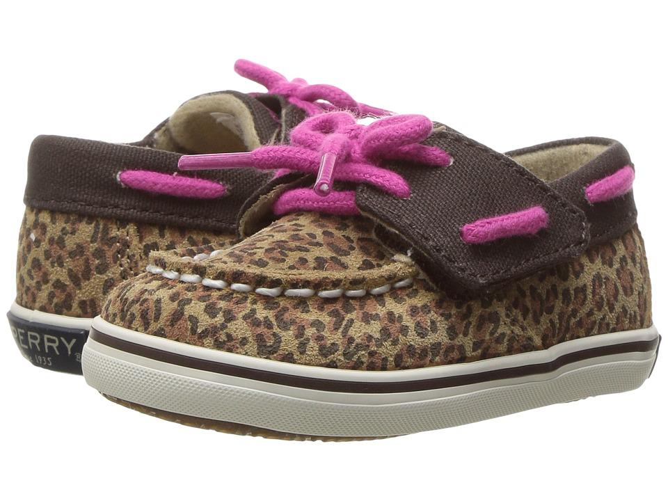 Sperry Kids - Intrepid Crib Jr. (Infant/Toddler) (Leopard) Girl's Shoes