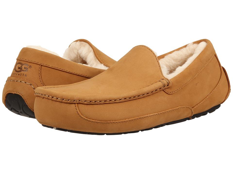UGG - Ascot Wheat (Wheat) Men's Slippers