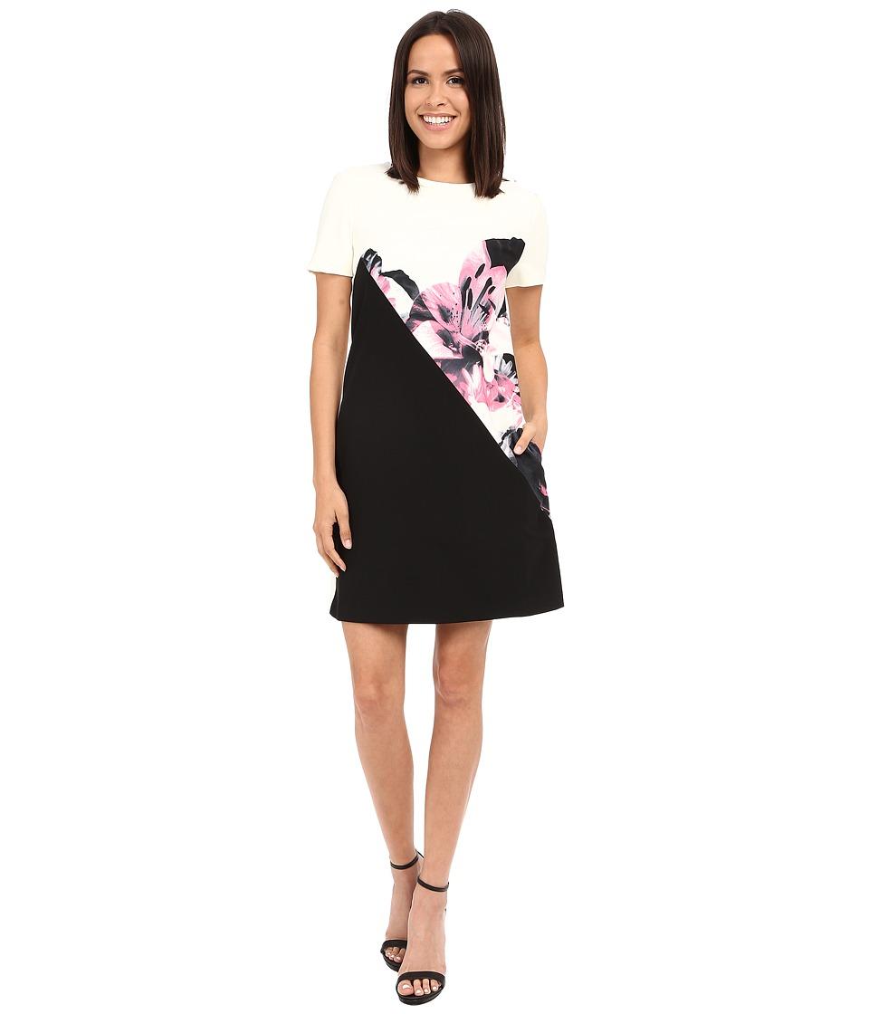 Ellen Tracy Color Blocked Shift Dress (Lilies Magnolis) Women