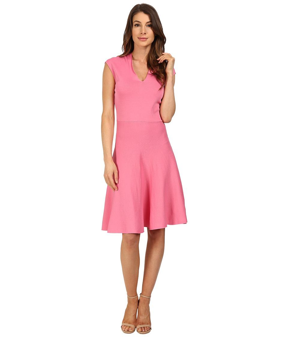 Ellen Tracy V-Neck Fit and Flare Dress (Azalea) Women