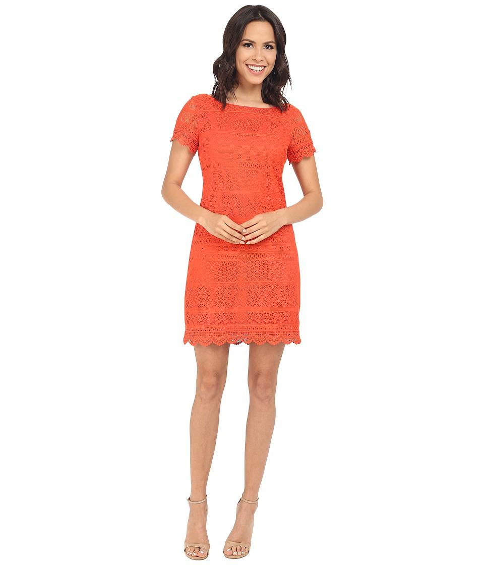 London Times - Short Sleeve Shift (Orange) Women's Dress