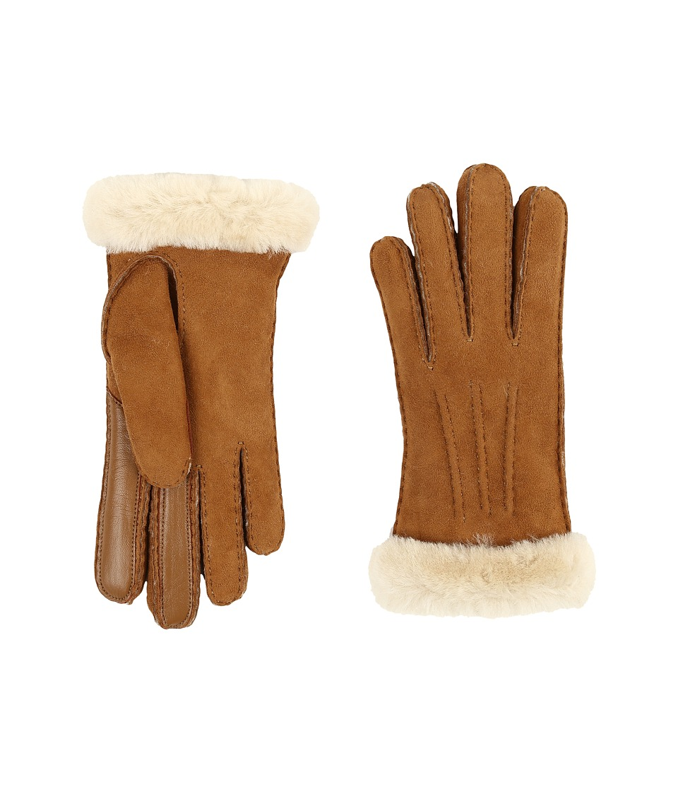 UGG - Carter Smart Glove (Chestnut) Extreme Cold Weather Gloves