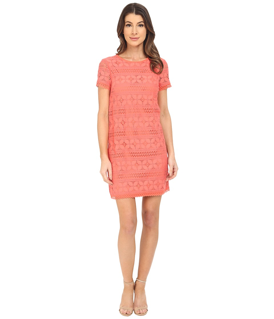 Maggy London - Petal Stripe Lace Shift (Coral) Women's Dress