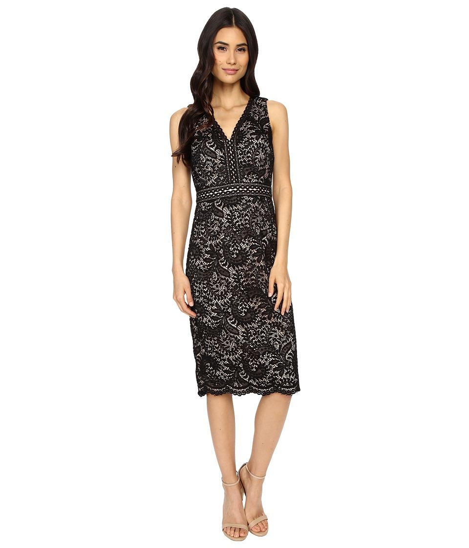 Maggy London Spanish Scroll Lace Sheath Dress (Black) Women