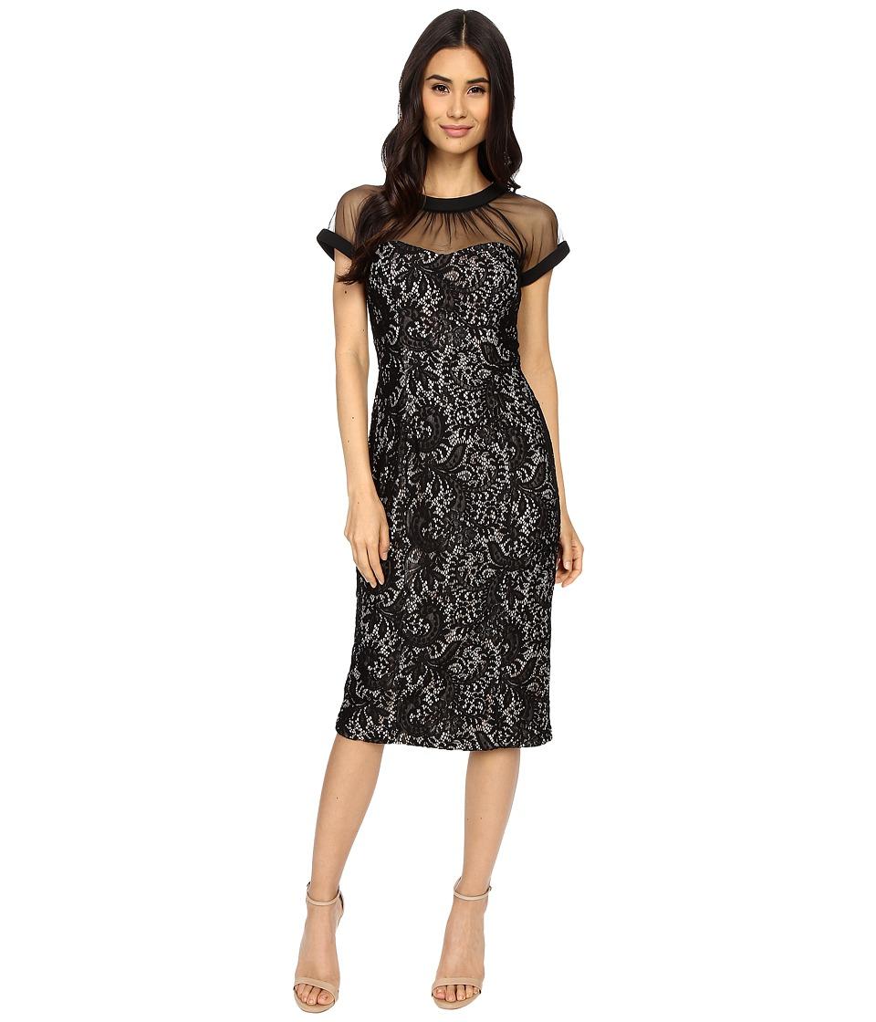 Maggy London Spanish Scroll Lace llusion Sheath Dress (Black) Women