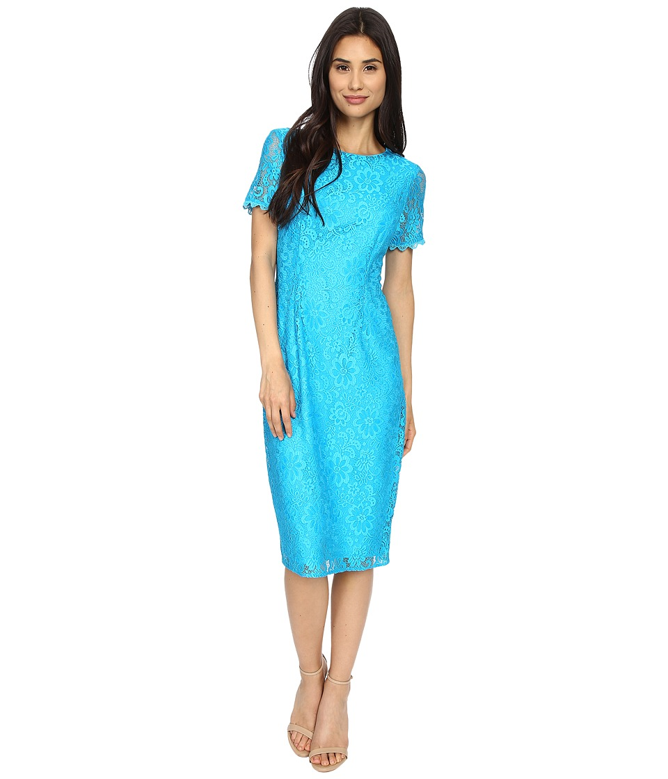 London Times - Fun Flower Lace Midi Sheath (Blue) Women's Dress