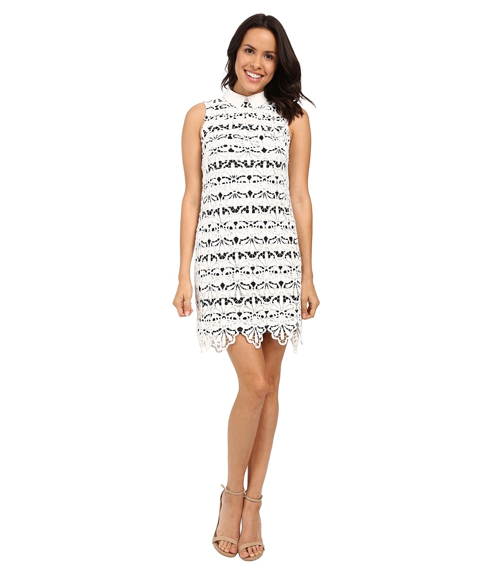 Adrianna Papell Collared Lace Shift Dress w/ Striped Lining (Ivory/Black) Women