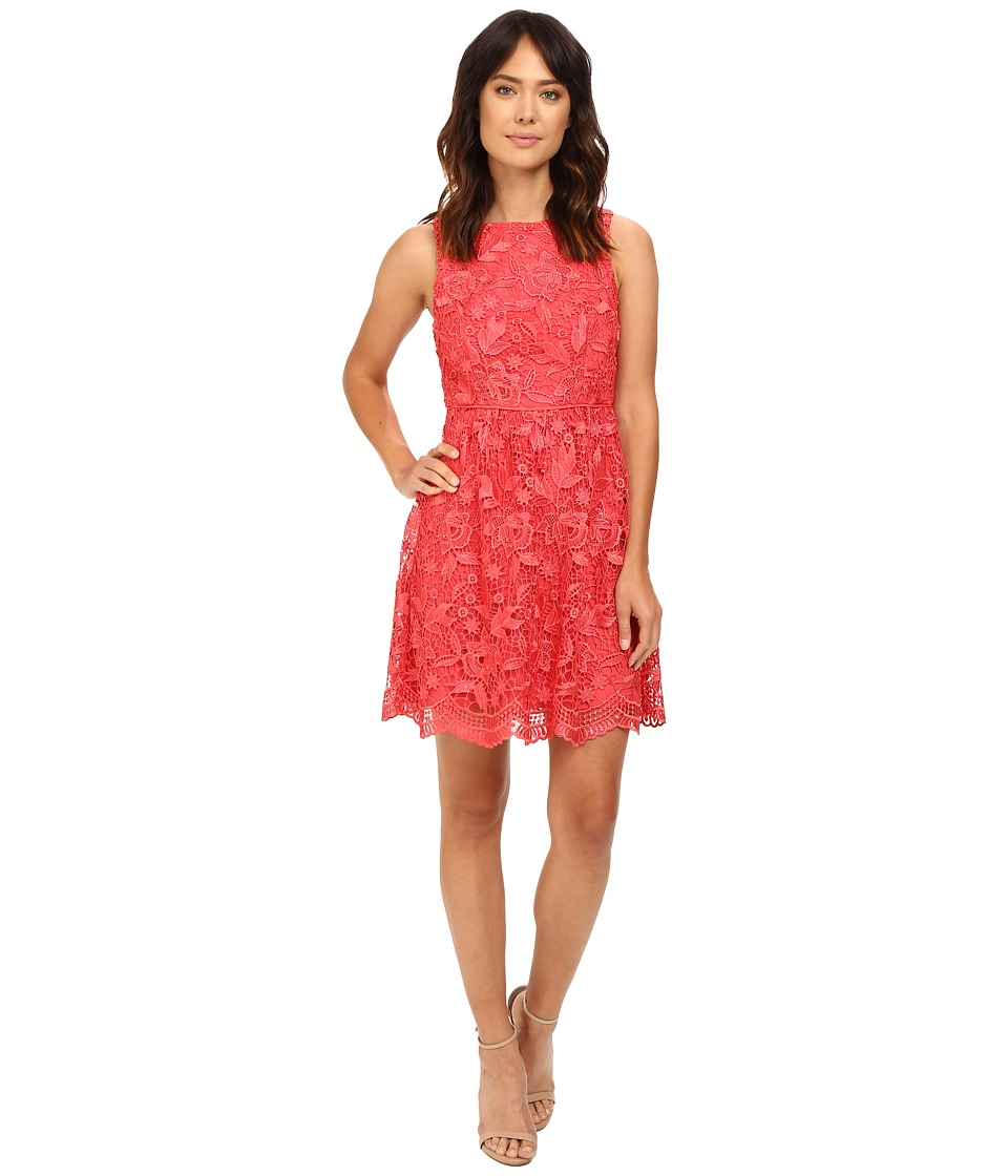 Adrianna Papell Fit Flare Venice Lace Dress (Paradise) Women