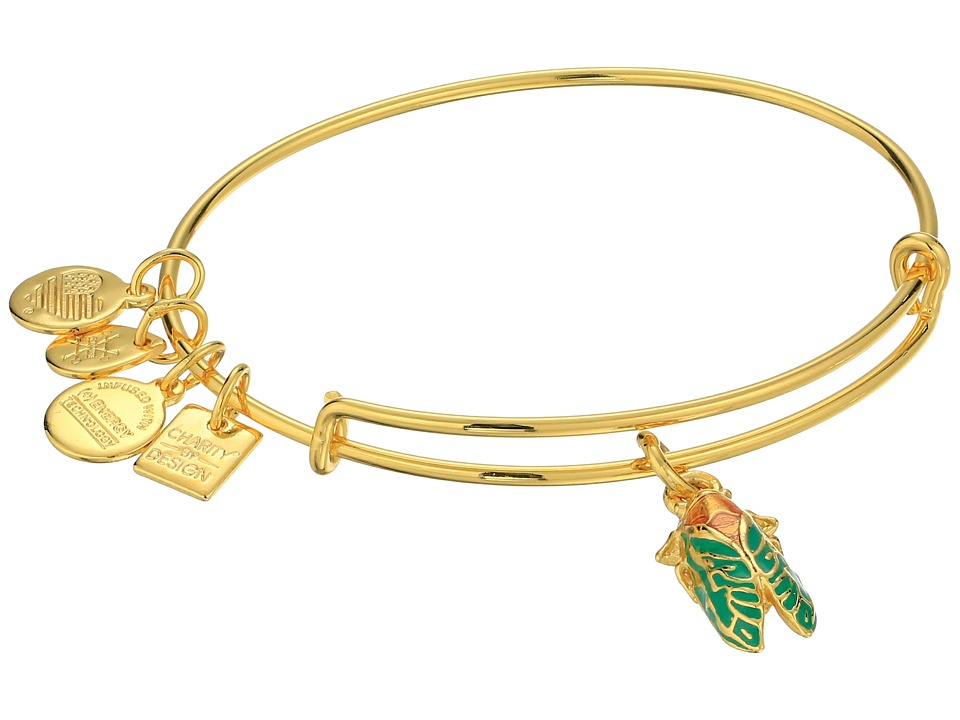 Alex and Ani - Charity By Design Cicada Bracelet (Rafaelian Gold) Bracelet