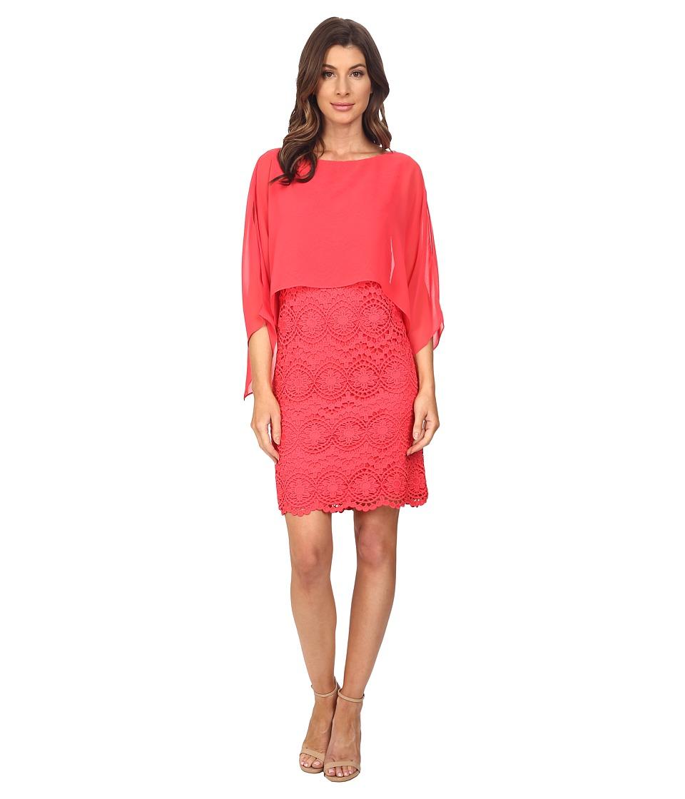 Adrianna Papell - Chiffon Capelet Lace Sheath Dress (Coral) Women's Dress