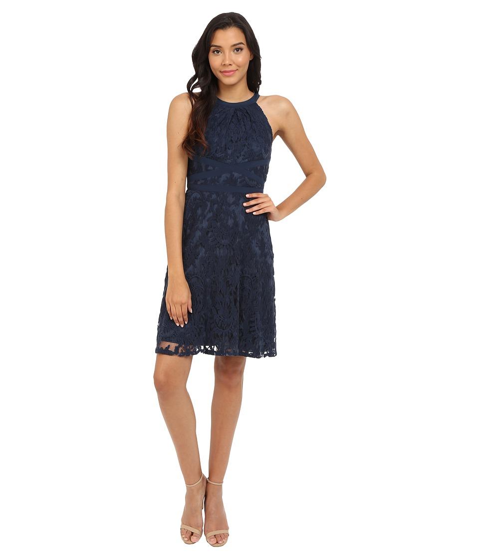 Adrianna Papell Filigree Lace Fit Flare Dress (Midnight Blue) Women