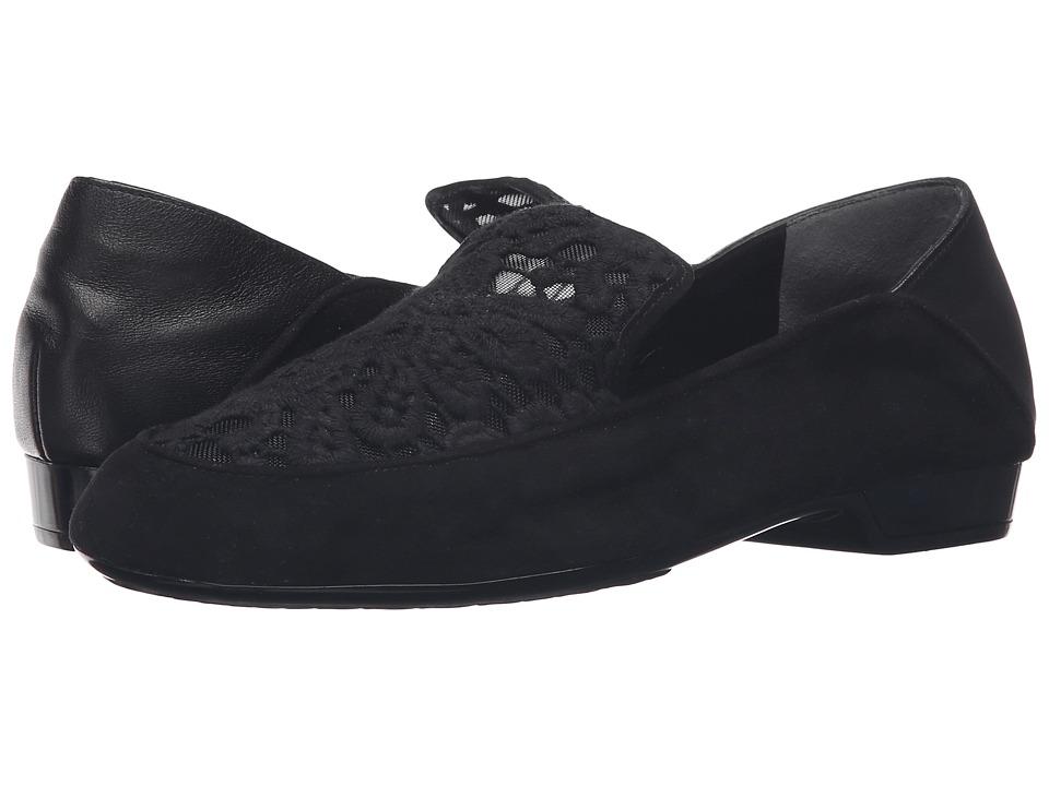 Clergerie - Fanit (Black Lace) Women's Shoes