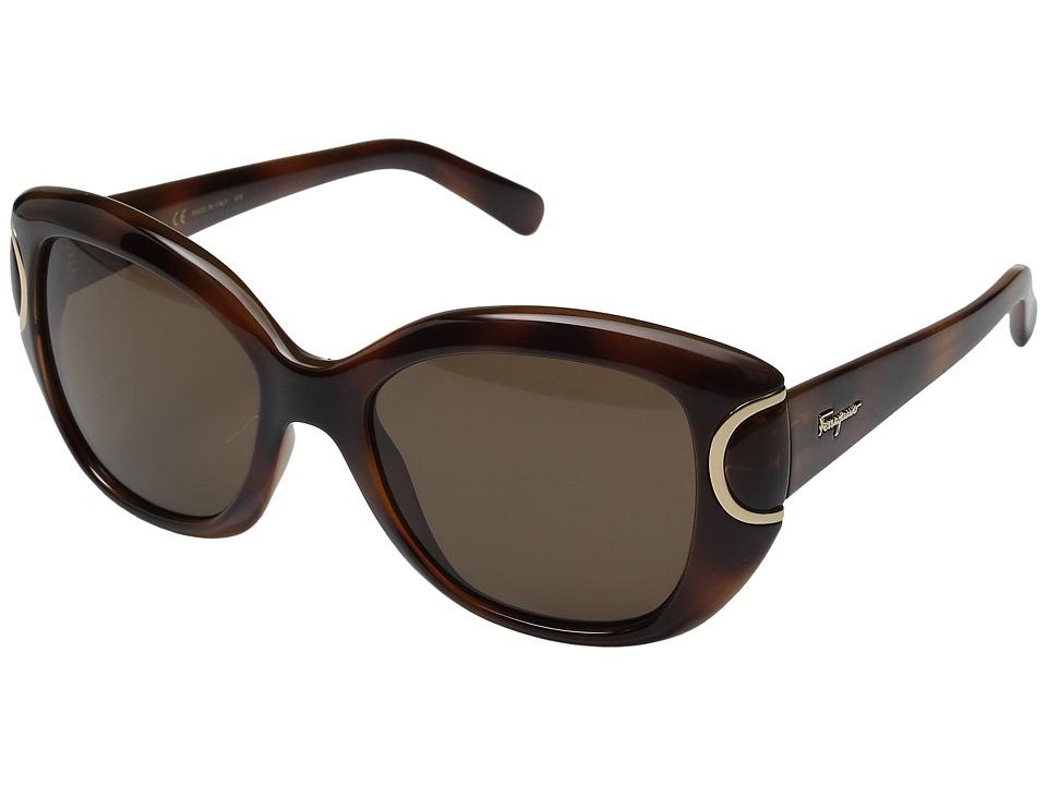 Salvatore Ferragamo - SF819S (Havana) Fashion Sunglasses