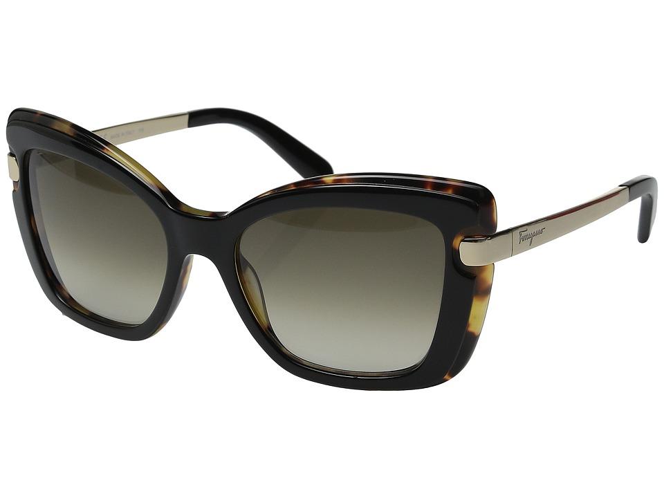 Salvatore Ferragamo - SF814S (Black Havana) Fashion Sunglasses