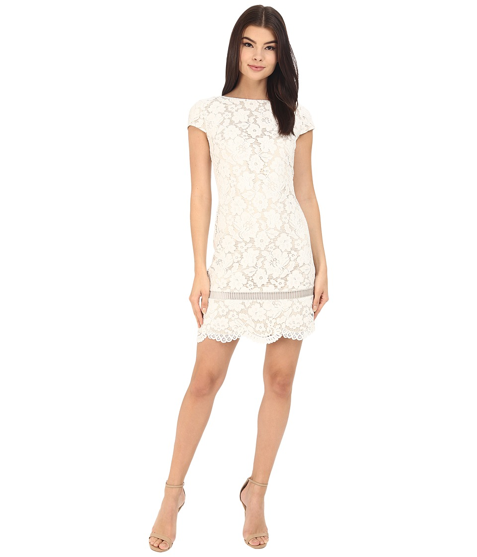 Vince Camuto - Short Sleeve Shift with Inset Trim at Hem Dress (Ivory) Women's Dress