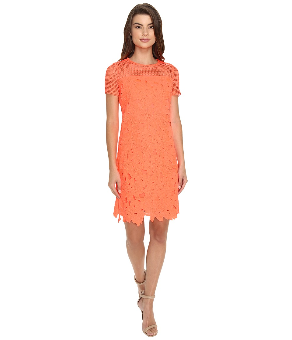 Christin Michaels - Donna Chemical Lace Dress (Neon Coral) Women's Dress