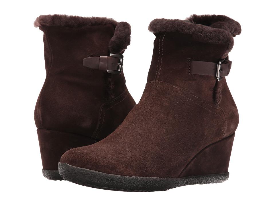 Geox - WAMELIAST22 (Coffee) Women's Shoes