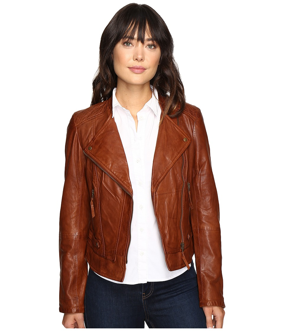 Stetson - Motto Style Leather Jacket (Brown) Women's Coat