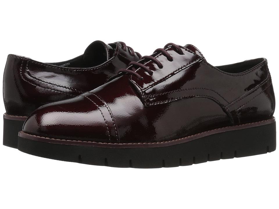 Geox - WBLENDA11 (Dark Grey) Women's Shoes