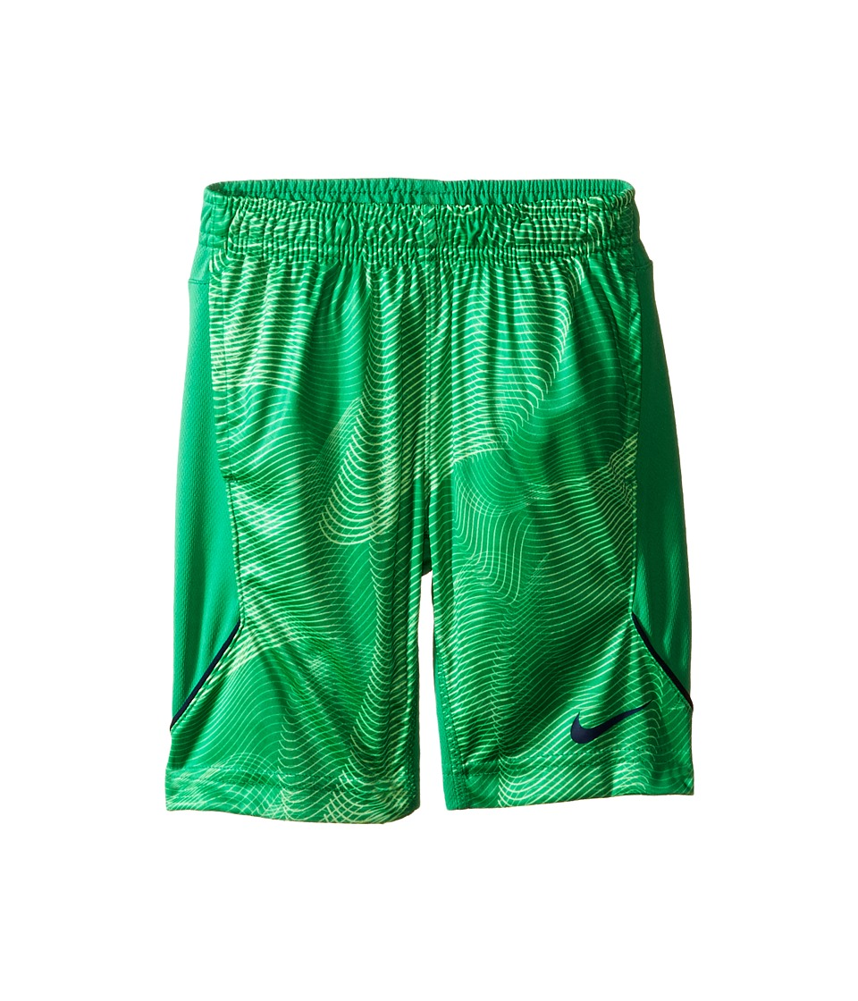 Nike Kids - Legacy Shorts (Toddler) (Spring Leaf) Boy's Shorts