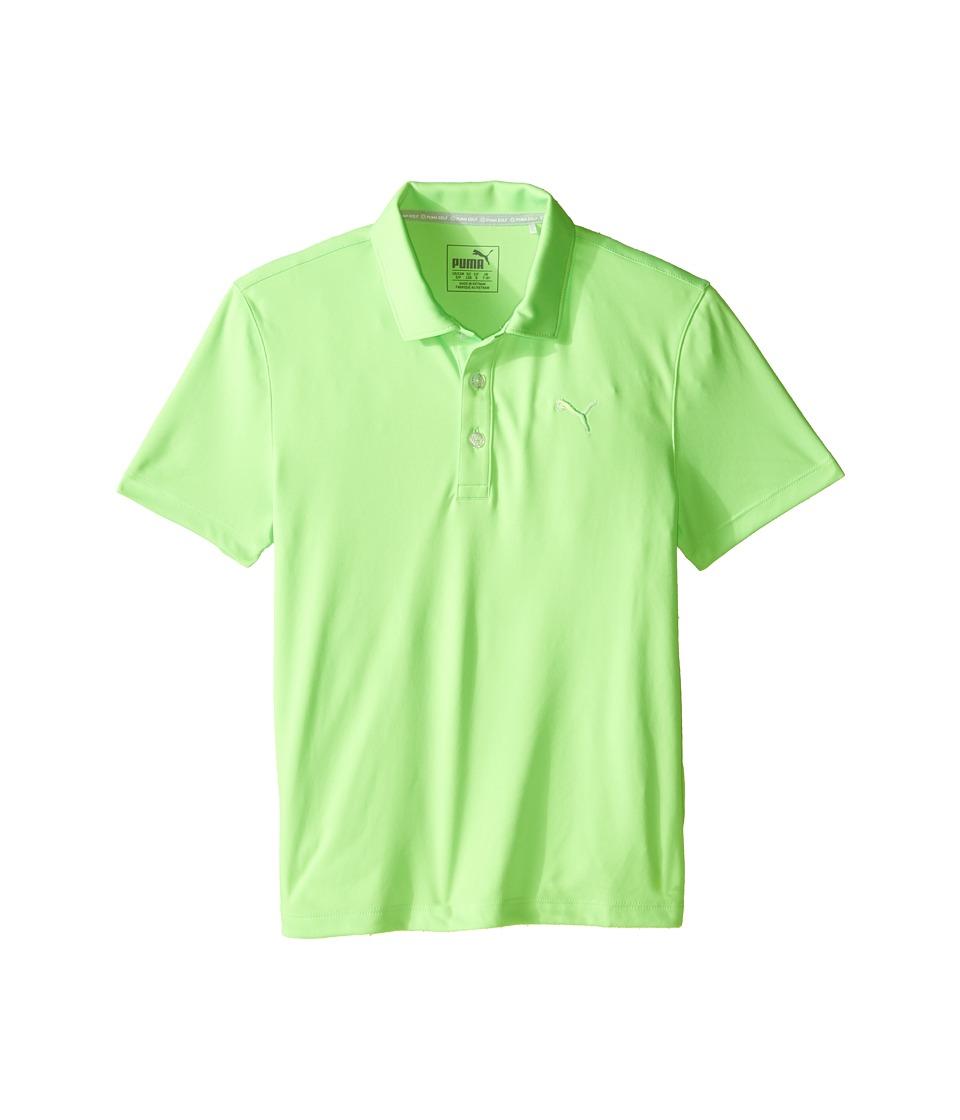 PUMA Golf Kids - Essential Pounce Polo JR (Big Kids) (Green Gecko) Boy's Clothing