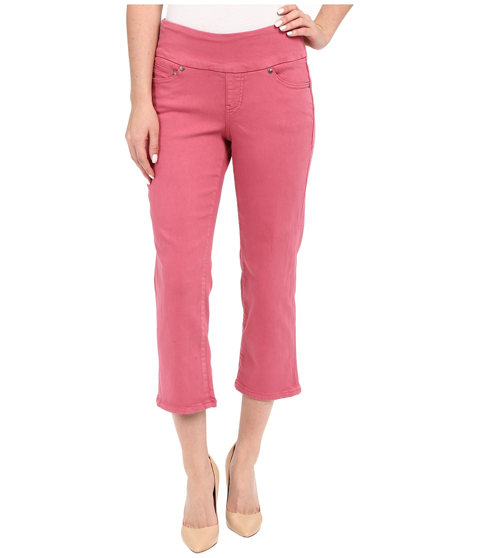 Jag Jeans Echo Pull-On Classic Fit Crop in Dolce Twill (Blossom) Women