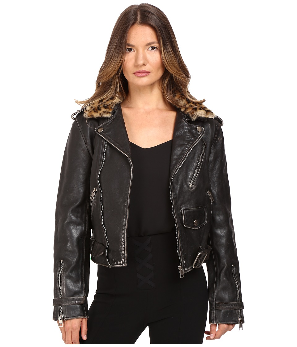 Just Cavalli - Leather Moto Zip with Cat Accent Runway Jacket (Black) Women's Coat