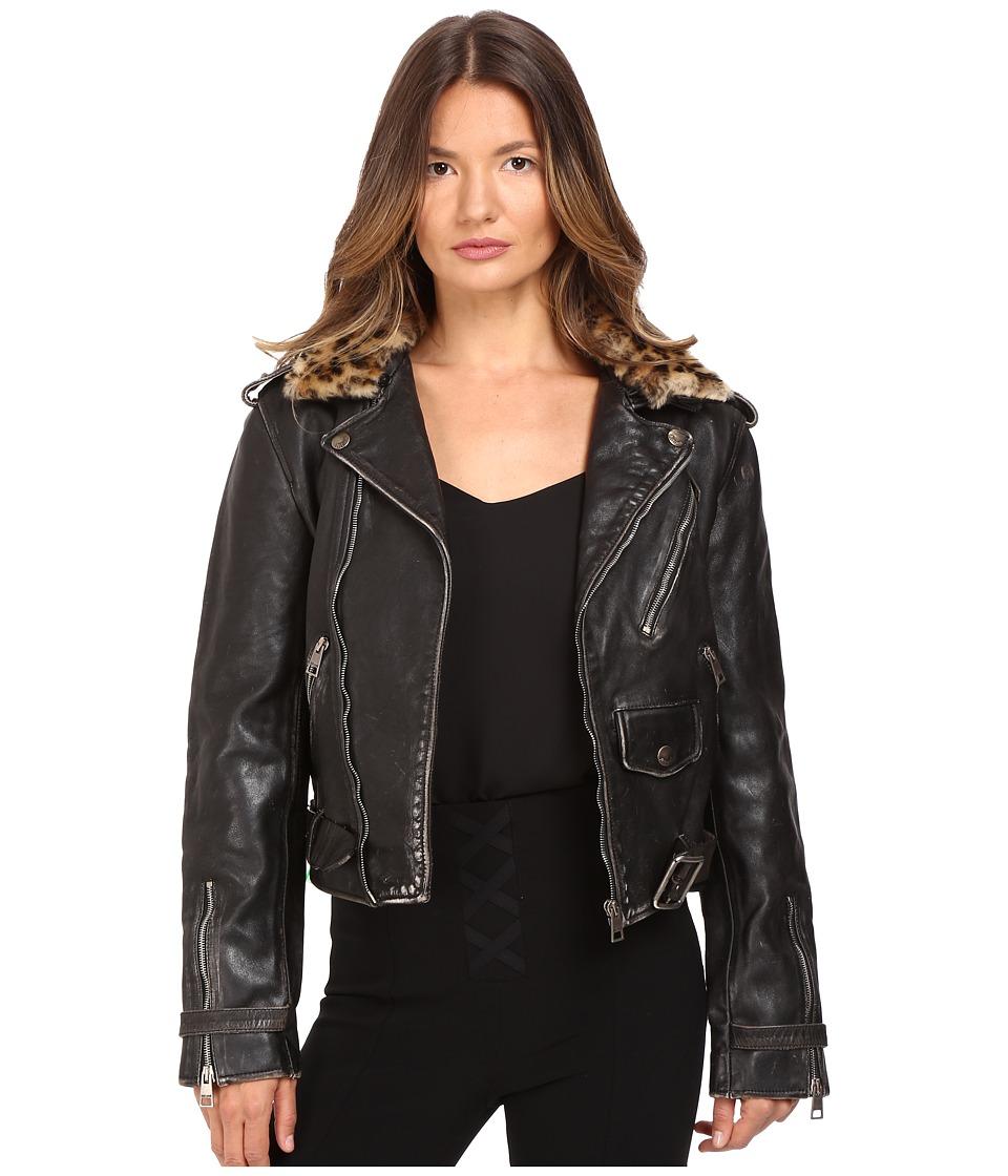 Just Cavalli - Leather Moto Zip with Cat Accent Runway Jacket (Black) Women's Coat