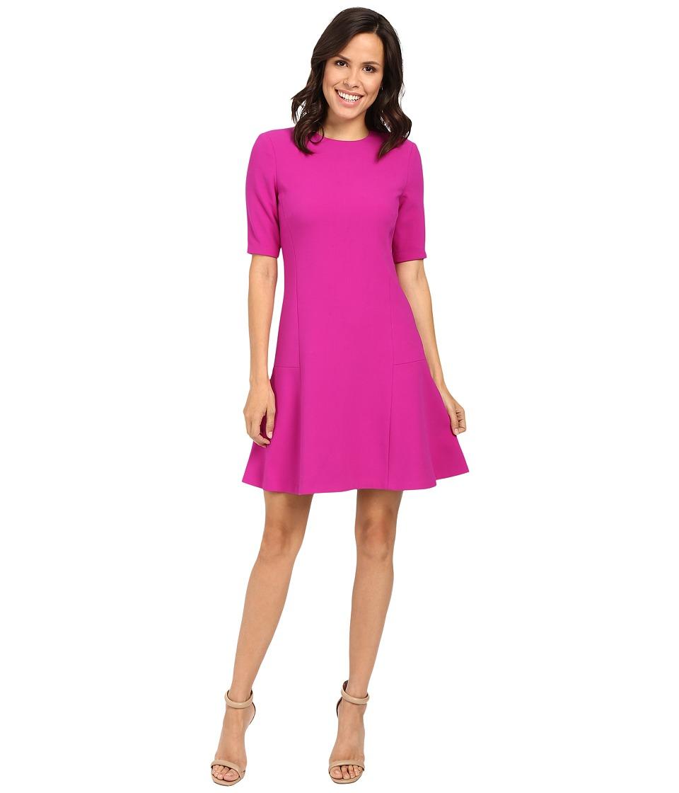 Ellen Tracy Seamed Flounce Dress (Rosette) Women