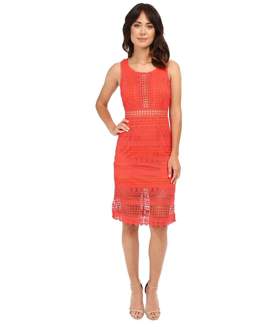 Brigitte Bailey - Ayla Lace Midi Dress (Red) Women's Dress