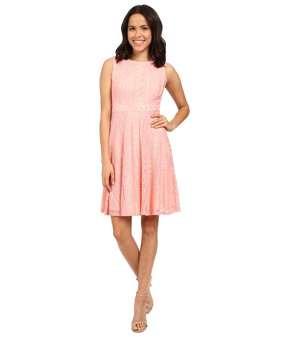 Sangria - Crochet Lace Fit Flare Dresss (Honeysuckle) Women's Dress