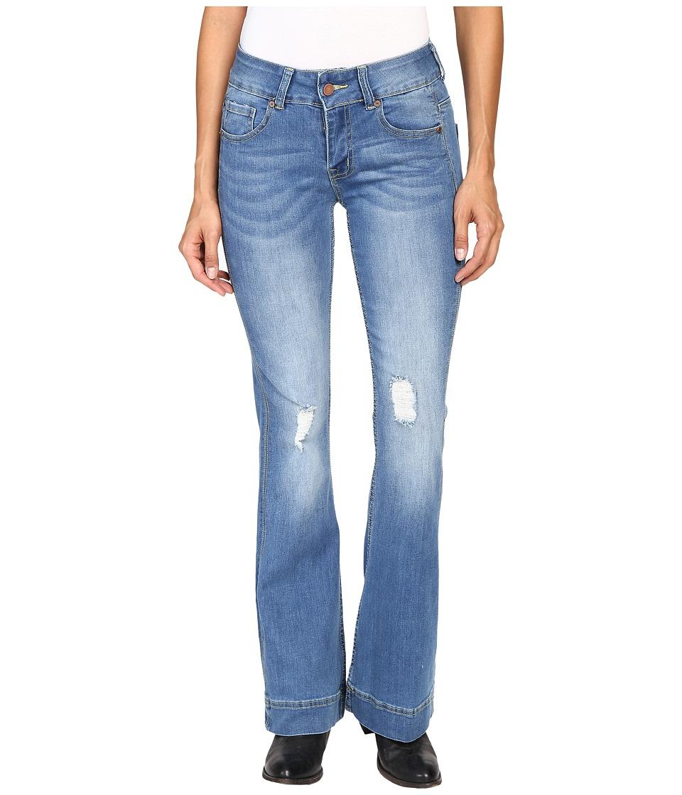 Petrol - Classic Flare Jeans in Dark Blue (Dark Blue) Women's Jeans
