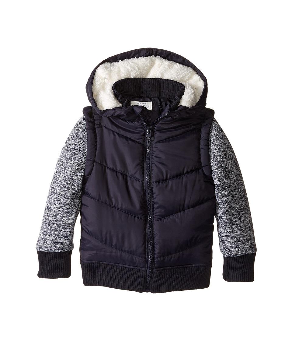 Pumpkin Patch Kids - Knit Sleeve Puffer Jacket (Infant/Toddler/Little Kids/Big Kids) (Parisian Night) Boy's Coat