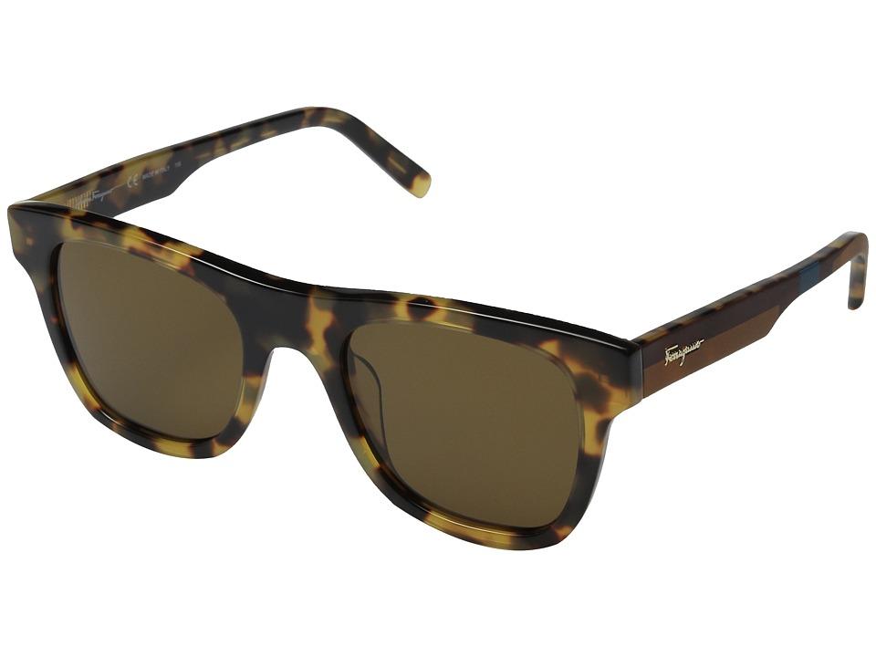 Salvatore Ferragamo - SF824SM (Havana Vintage/Brown) Fashion Sunglasses