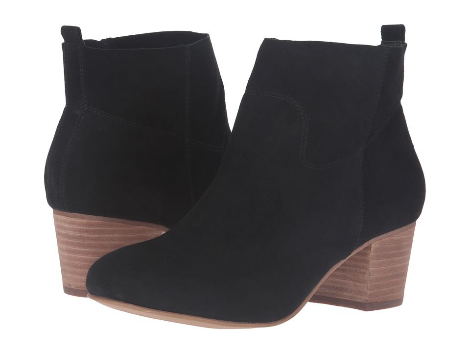 Steve Madden - Harber (Black Suede) Women's Boots